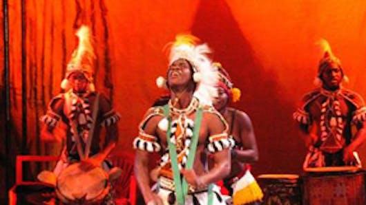 Exotique : le cirque Baobab