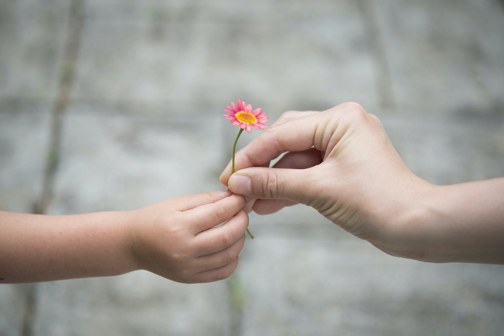 Politesse : montrer l'exemple à son enfant