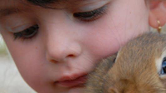 La rencontre entre Bébé et l'animal