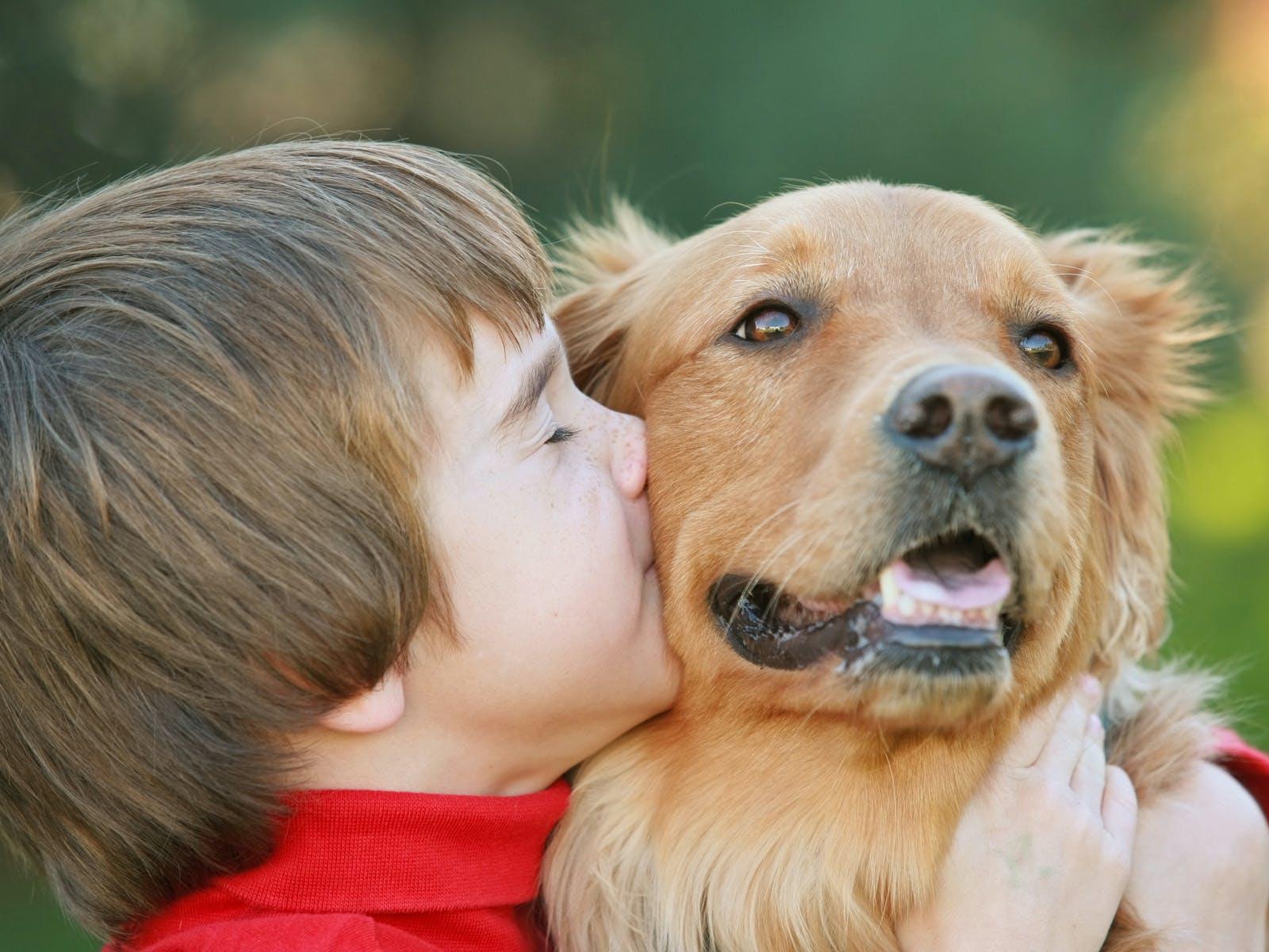 Animal de compagnie pour un enfant : lequel choisir ?