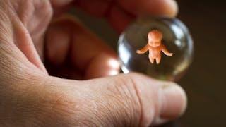 Foetus ou Bébé ?