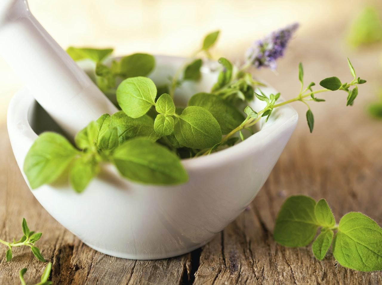 Enceinte se soigner par les plantes - Plante pour soigner les verrues ...