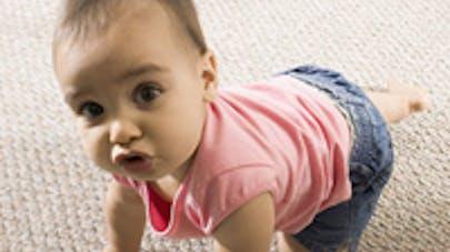 Croquettes et Bébé : prudence