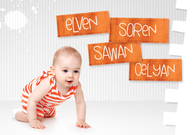 Elven, Soren, Sawan et Celyan