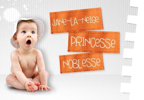 Noblesse, Jane-La-Neige et Princesse