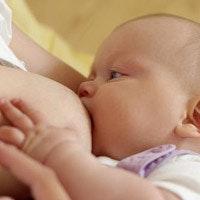 Le don de lait, une façon de sauver des vies