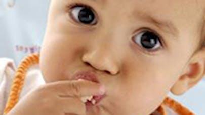 Les bébés savent quoi manger