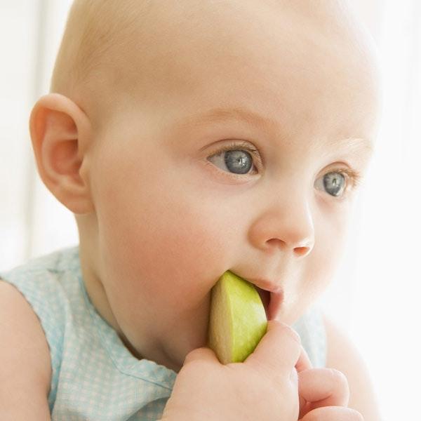 L'alimentation de Bébé de 6 à 12 mois : ses premiers   repas