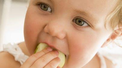 Allergie à l'œuf chez l'enfant : une piste de guérison   ?