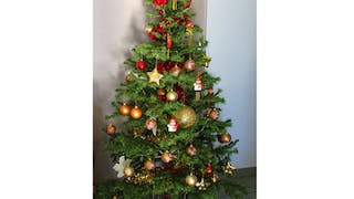 Sapin traditionnel