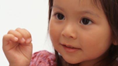 Le débat sur l'adoption plénière relancé