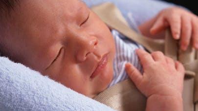 Un bébé emmené par mégarde à la fourrière