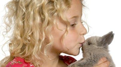 Autisme : l'animal de compagnie aiderait au développement   social de l'enfant