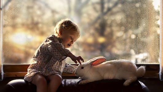12 sublimes photos sur la complicité   enfants-animaux
