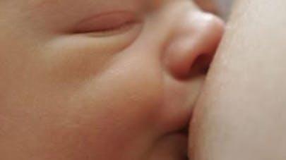 L'allaitement protège les bébés de la pollution de   l'air