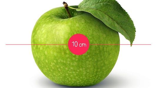 L'évolution du fœtus in utero illustrée en 36 fruits et  légumes