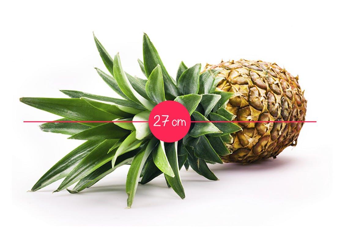 Semaine 28 : un ananas