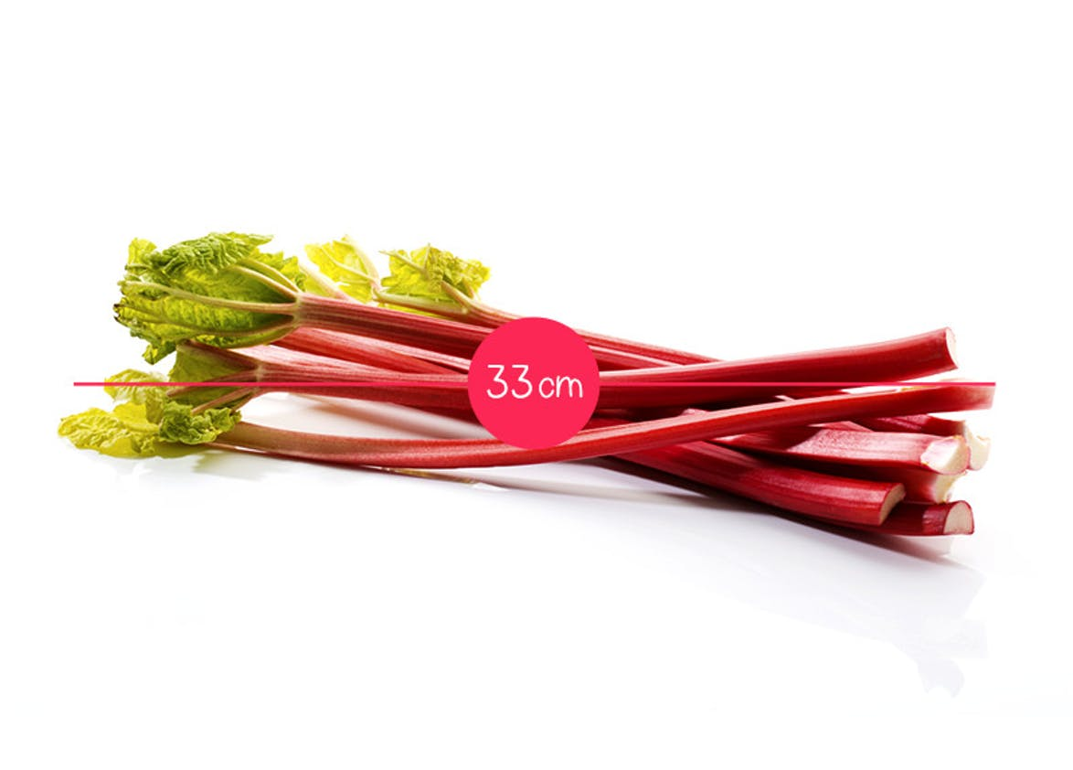 Semaine 33 : une rhubarbe