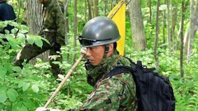 Japon : le petit garçon disparu en forêt a été   retrouvé