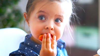 Les aliments industriels aussi bons pour la santé de bébé   que le fait maison