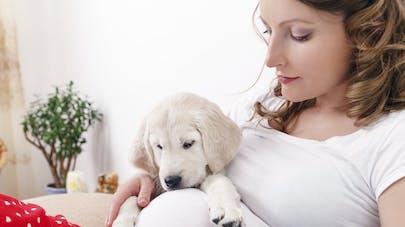 Diapo: d'adorables clichés de chiens auprès de leur   maîtresse enceinte
