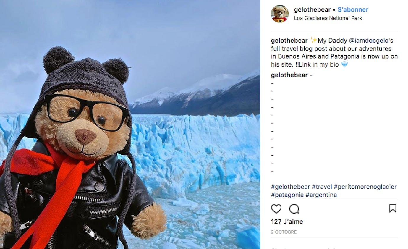 Gelo the bear