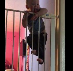 Impressionnant : Ce bébé escalade une barrière de sécurité de 1,60 mètre de haut ! (VIDEO)