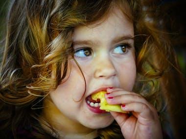 L'alimentation des enfants entre 18 et 36 mois