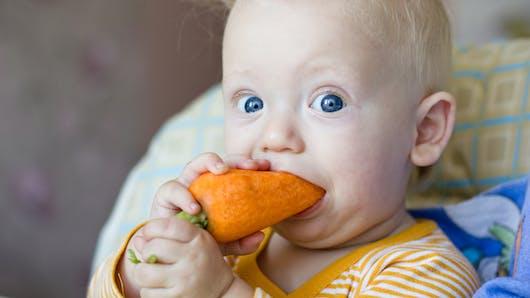 Fruits et légumes: bébé passe au cru