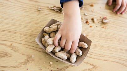 La consommation de cacahuètes dans l'enfance fait diminuer  le risque d'allergie
