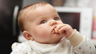 bébé repas