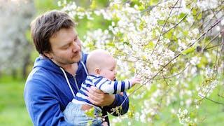papa et son bébé sous les arbres en fleurs