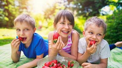 trois enfants mangent des fraises pendant un pique-nique
