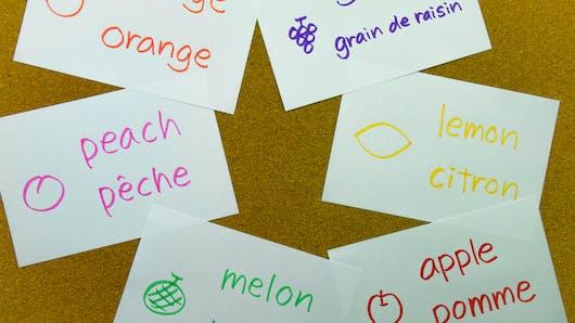 Etablissements bilingues pour bébés