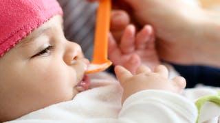 bébé premières purées