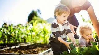 maman enfants cueillette légumes