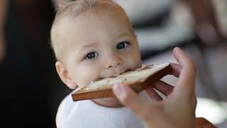 bébé tartine