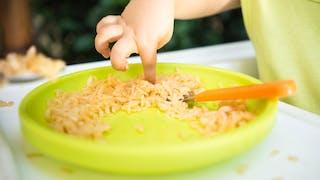 petits doigts de bébé dans assiette de riz