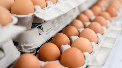 Œufs contaminés au Fipronil: les Français ont-ils changé leur comportement d'achat?
