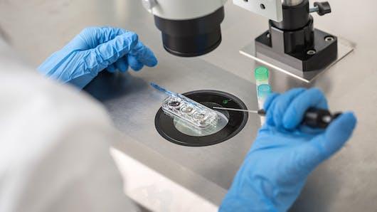 Easy Fiv: un site qui accompagne les couples dans la fécondation in vitro