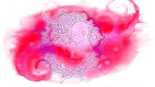 illustration  liquide amniotique