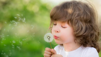 Le point sur les allergies de printemps