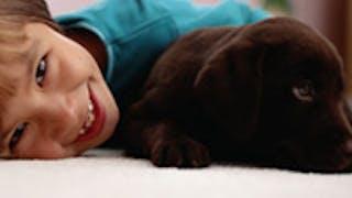 L'amitié entre Bébé et l'animal
