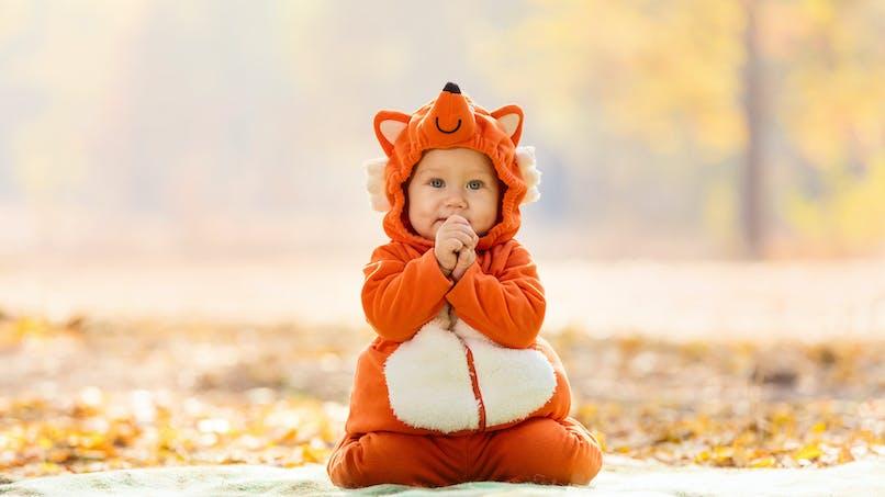 Quel déguisement pour Bébé ?