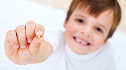 A quel âge mon enfant va-t-il perdre ses dents de lait ?