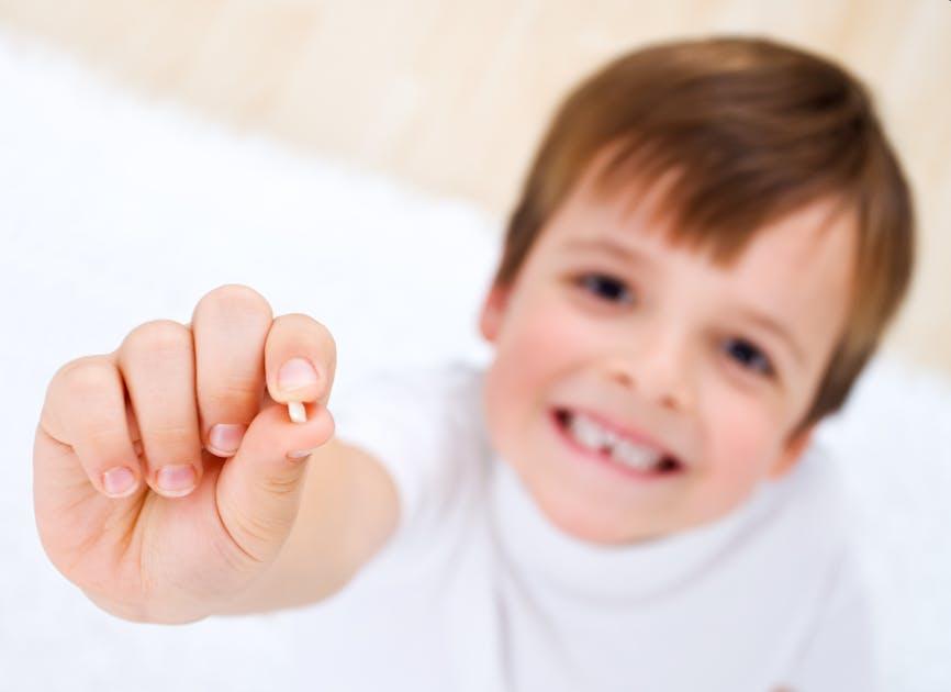 Dents De Lait La Petite Souris Va Passer Parentsfr