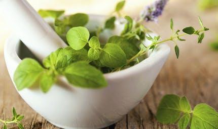 Enceinte, se soigner par les plantes