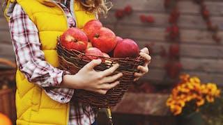 Fruits et légumes pour enfants : les recommandations par  jour