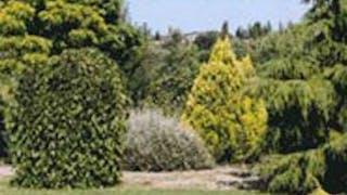 Jardin aux plantes La Bouichère