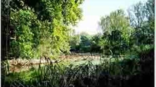 La Maison de la Forêt et du Bois